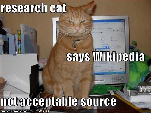 wiki cat e1363117939553 favorite college memes from csu online